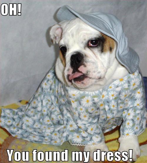 Oh Hai!  I found you a dress